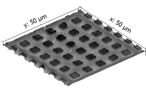 50 x 50 um grid-gray